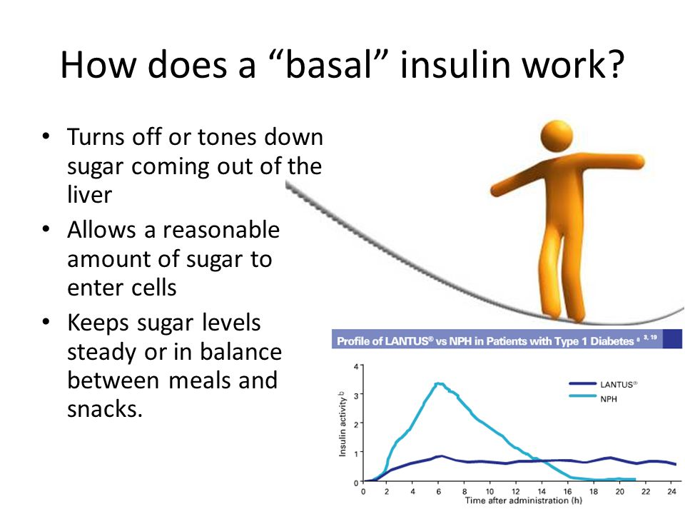 How does a basal insulin work.