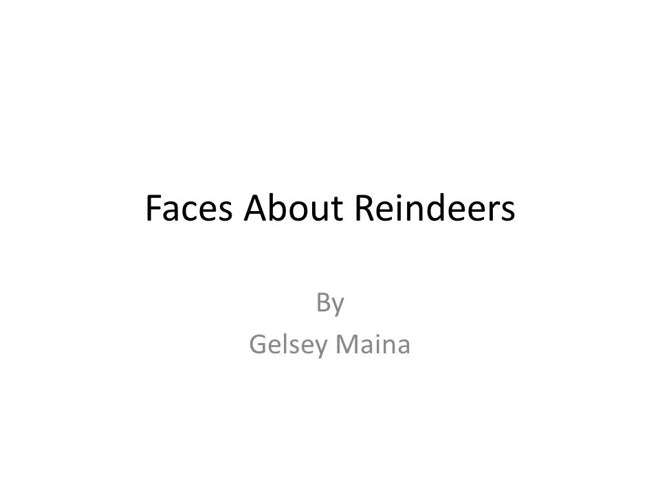 Faces About Reindeers By Gelsey Maina