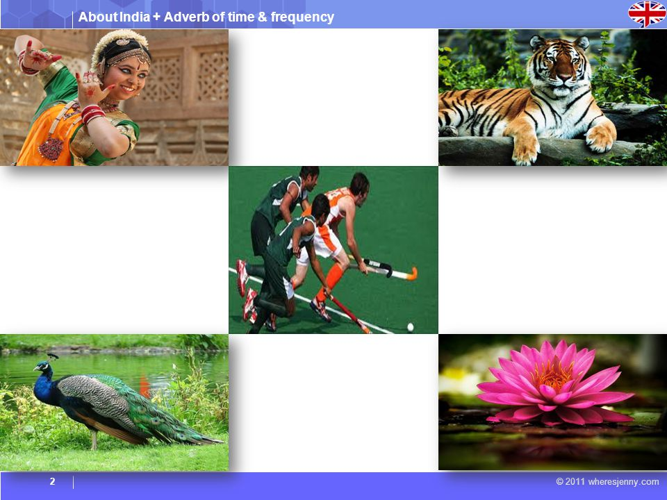 About India + Adverb of time & frequency © 2011 wheresjenny.com National Dance Bharatnatyam National Bird Peacock National Animal Tiger National Flower Lotus National Sport Hockey 3