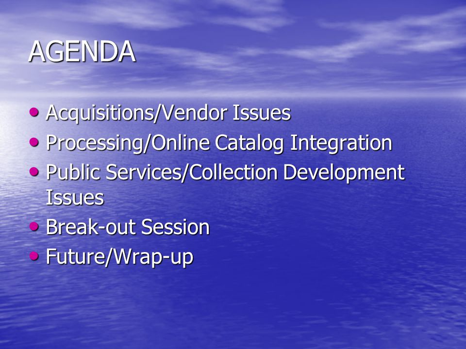 AGENDA Acquisitions/Vendor Issues Acquisitions/Vendor Issues Processing/Online Catalog Integration Processing/Online Catalog Integration Public Services/Collection Development Issues Public Services/Collection Development Issues Break-out Session Break-out Session Future/Wrap-up Future/Wrap-up