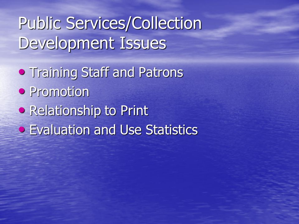 Public Services/Collection Development Issues Training Staff and Patrons Training Staff and Patrons Promotion Promotion Relationship to Print Relationship to Print Evaluation and Use Statistics Evaluation and Use Statistics