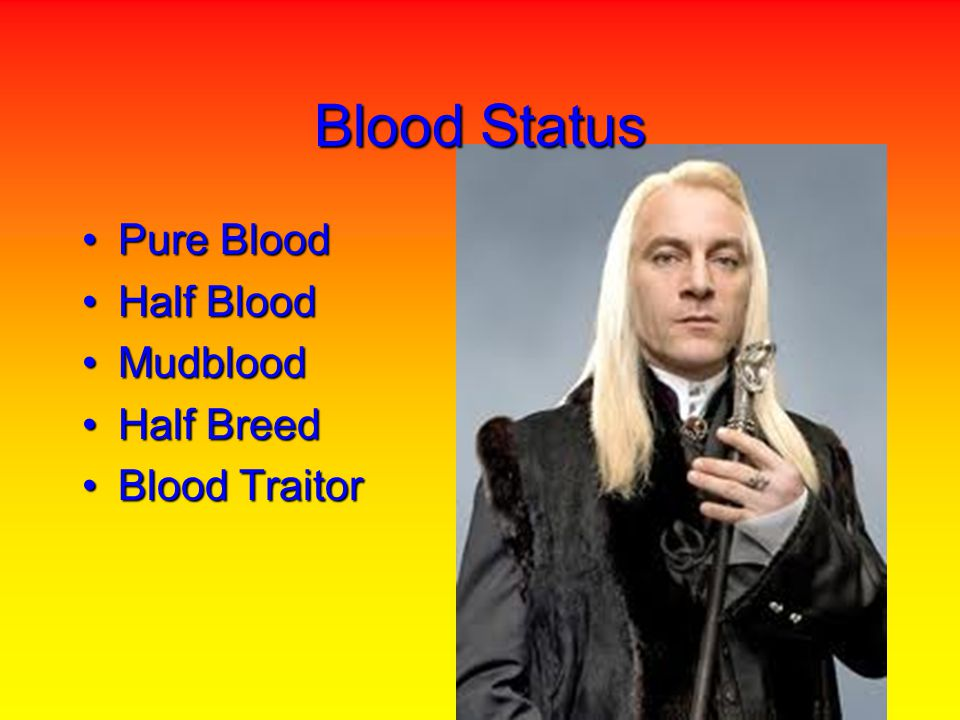 Blood Status Pure BloodPure Blood Half BloodHalf Blood MudbloodMudblood Half BreedHalf Breed Blood TraitorBlood Traitor