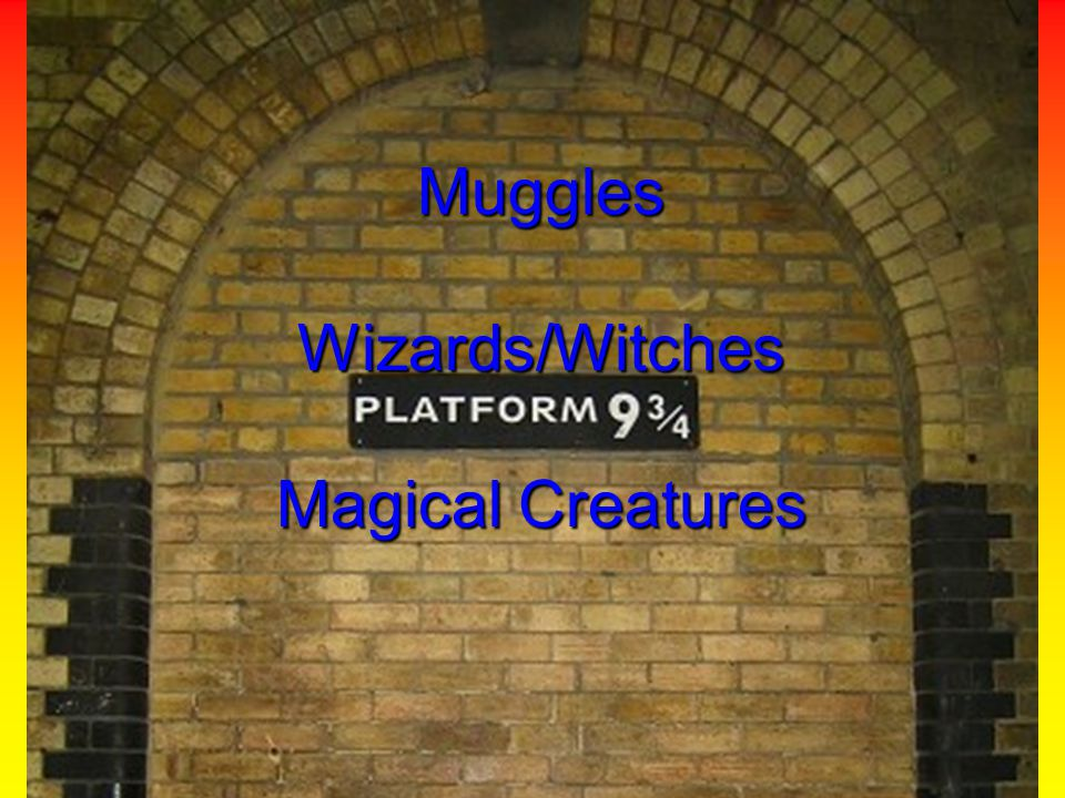 Muggles Wizards/Witches Magical Creatures