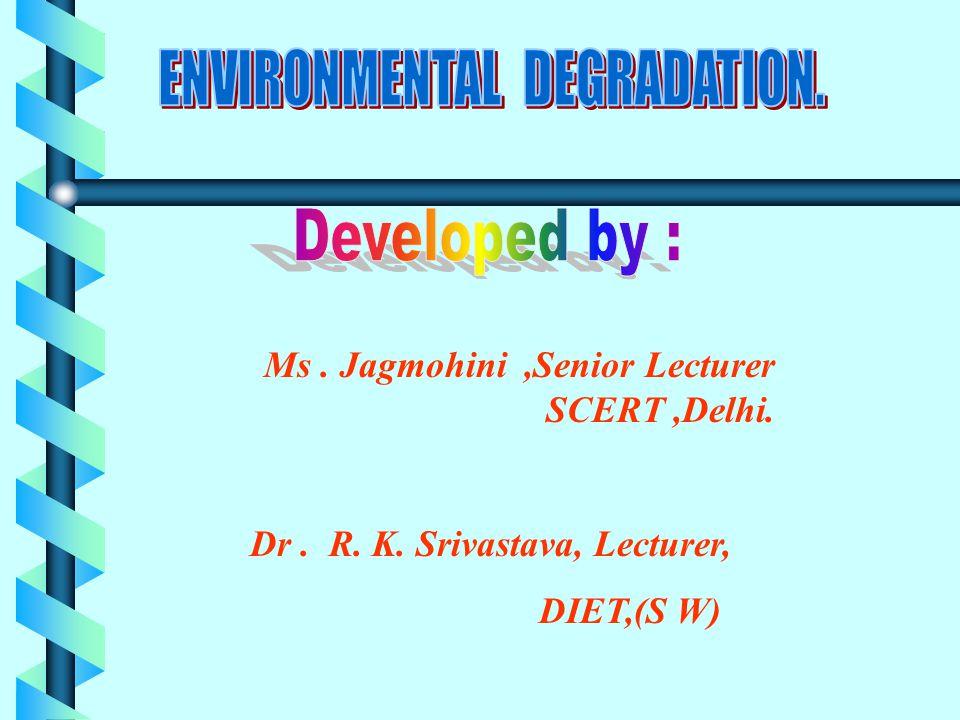 Ms. Jagmohini,Senior Lecturer SCERT,Delhi. Dr. R. K. Srivastava, Lecturer, DIET,(S W)