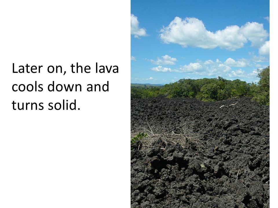 Pyroclastic flow at MayonVolcano Photo: C.G.