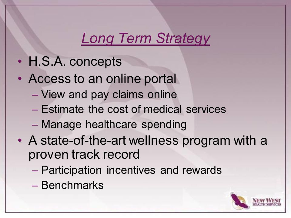 Long Term Strategy H.S.A.
