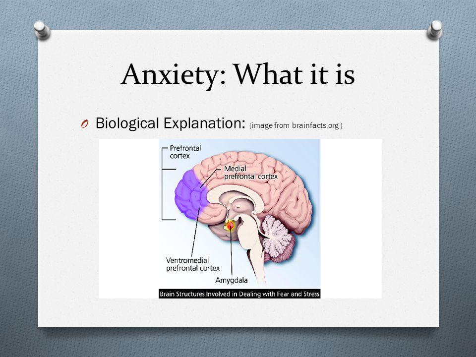 Anxiety: What It Is Diagram from: http://4.bp.blogspot.com/-YjaOv9m1SiY/TeLmRFdVaUI/AAAAAAAAALw/xQCezhKwtJQ/s1600/stress.jpghttp://4.bp.blogspot.com/-YjaOv9m1SiY/TeLmRFdVaUI/AAAAAAAAALw/xQCezhKwtJQ/s1600/stress.jpg