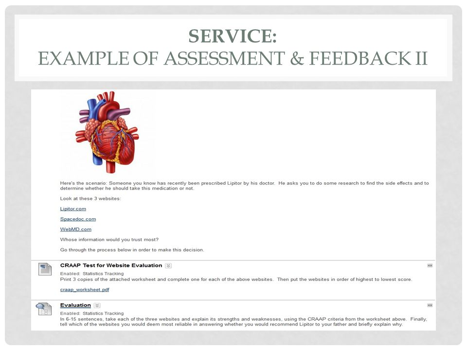 SERVICE: EXAMPLE OF ASSESSMENT & FEEDBACK II