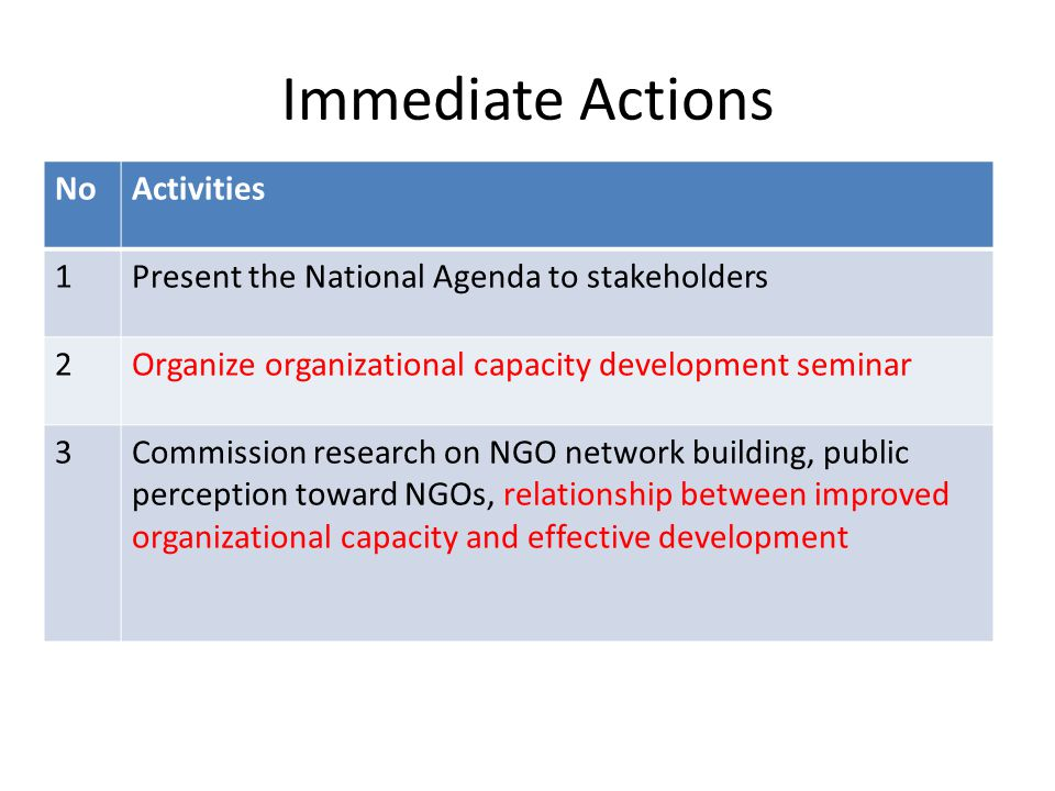 Immediate Actions NoActivities 1Present the National Agenda to stakeholders 2Organize organizational capacity development seminar 3Commission research on NGO network building, public perception toward NGOs, relationship between improved organizational capacity and effective development