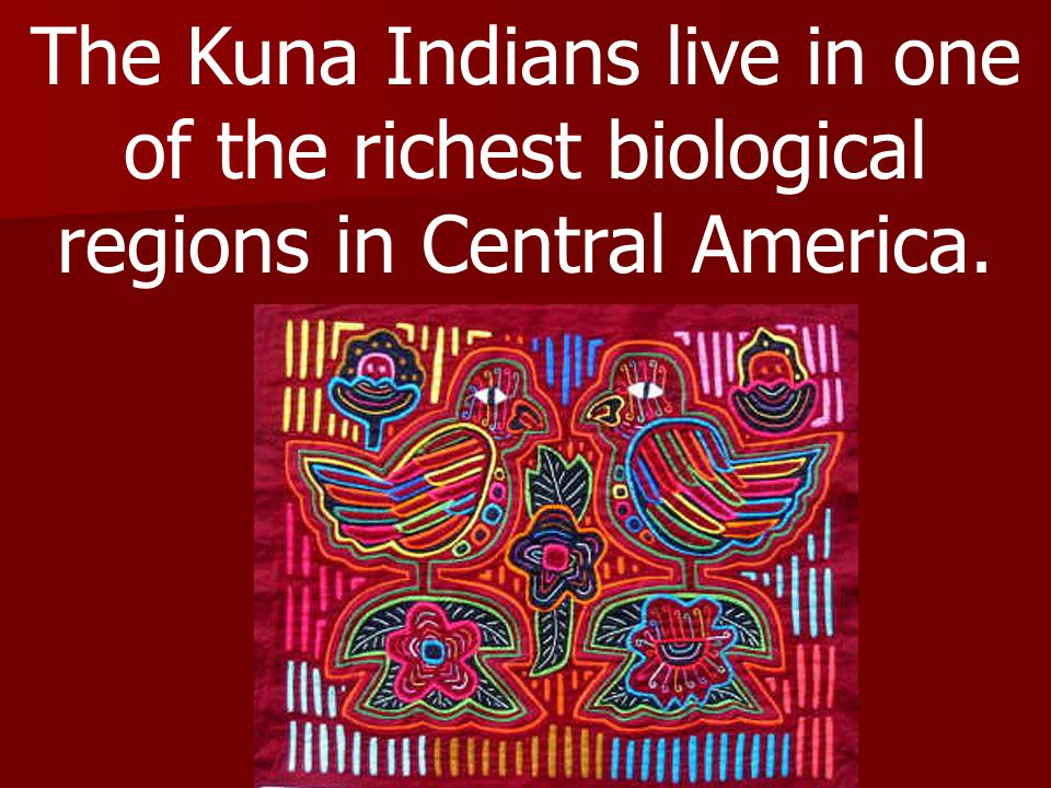 The Kuna Indians live in one of the richest biological regions in Central America.