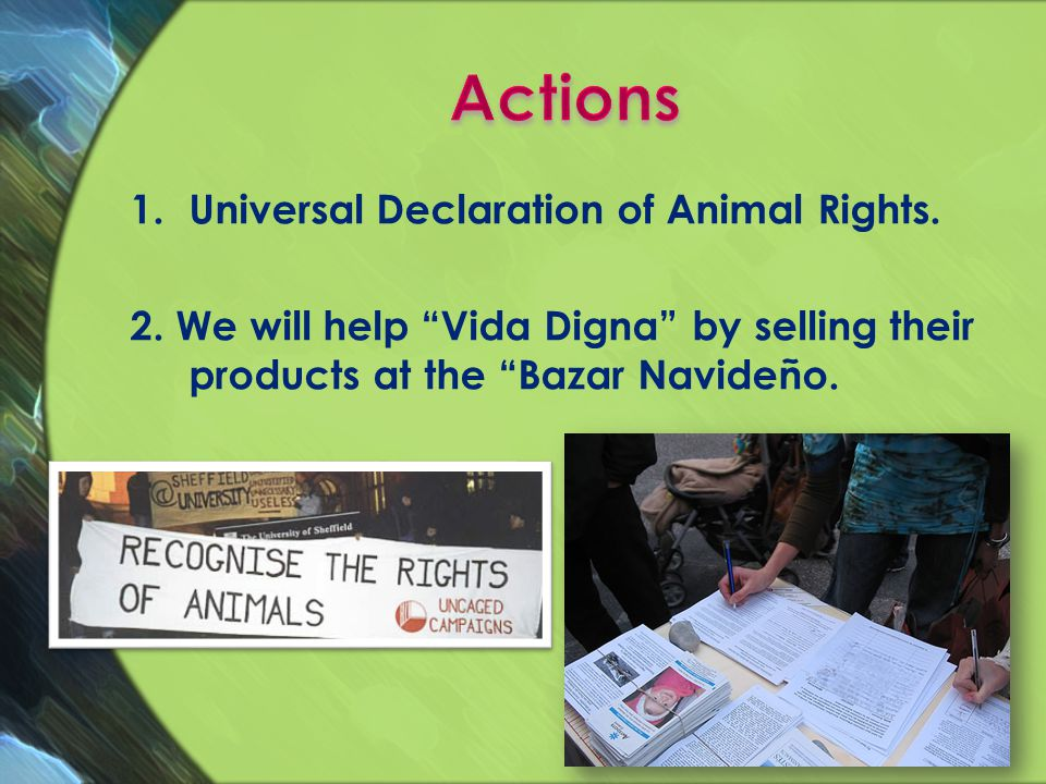 1.Universal Declaration of Animal Rights. 2. We will help Vida Digna by selling their products at the Bazar Navideño.
