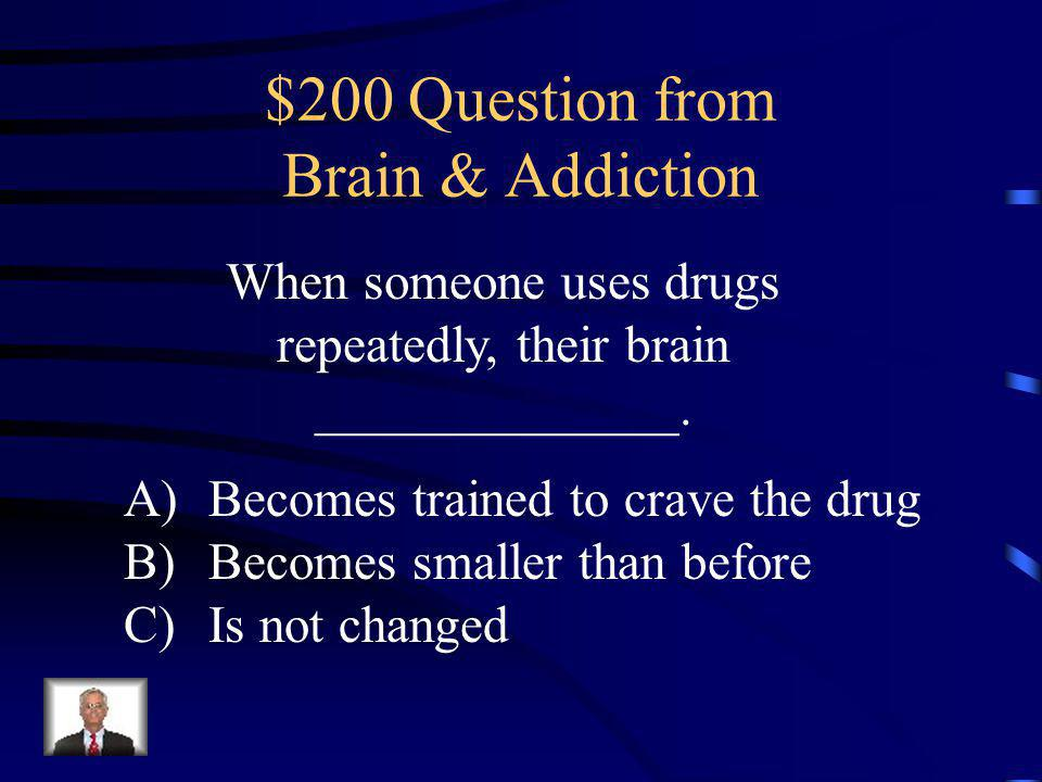 $100 Answer from Brain & Addiction C: The human brain weighs about 3 pounds, about the size of a Chihuahua.