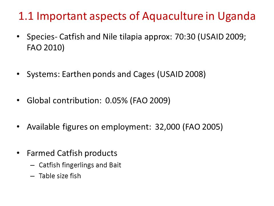 1.1 Important aspects of Aquaculture in Uganda Species- Catfish and Nile tilapia approx: 70:30 (USAID 2009; FAO 2010) Systems: Earthen ponds and Cages (USAID 2008) Global contribution: 0.05% (FAO 2009) Available figures on employment: 32,000 (FAO 2005) Farmed Catfish products – Catfish fingerlings and Bait – Table size fish