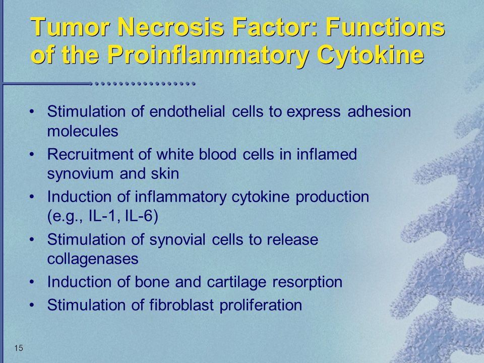 15 Tumor Necrosis Factor: Functions of the Proinflammatory Cytokine Stimulation of endothelial cells to express adhesion molecules Recruitment of whit