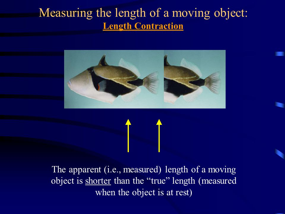 Measuring the length of a moving object: Length Contraction The apparent (i.e., measured) length of a moving object is shorter than the true length (m