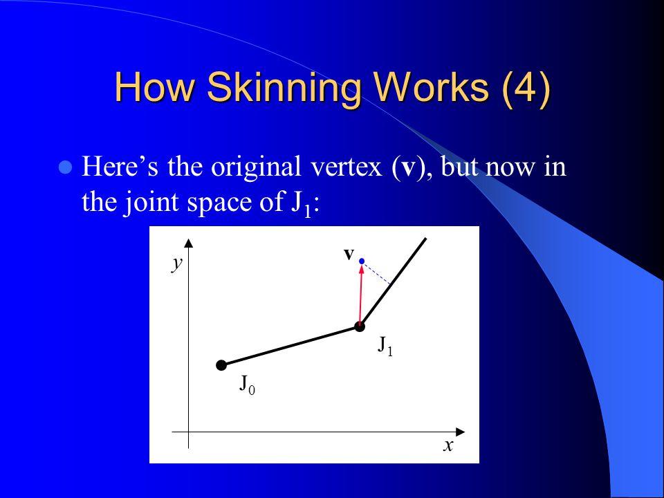 How Skinning Works (4) Heres the original vertex (v), but now in the joint space of J 1 : J1J1 J0J0 y x v