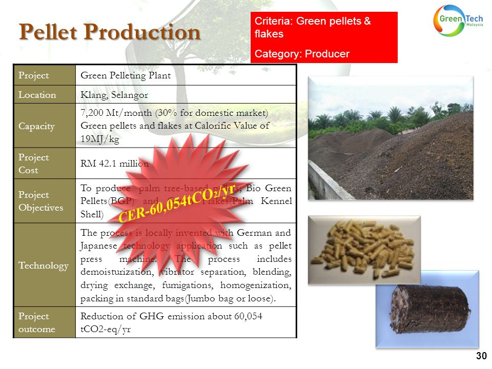 30 ProjectGreen Pelleting Plant LocationKlang, Selangor Capacity 7,200 Mt/month (30% for domestic market) Green pellets and flakes at Calorific Value of 19MJ/kg Project Cost RM 42.1 million Project Objectives To produce palm tree-based pellets; Bio Green Pellets(BGP) and Green Flakes(Palm Kennel Shell) Technology The process is locally invented with German and Japanese technology application such as pellet press machine.
