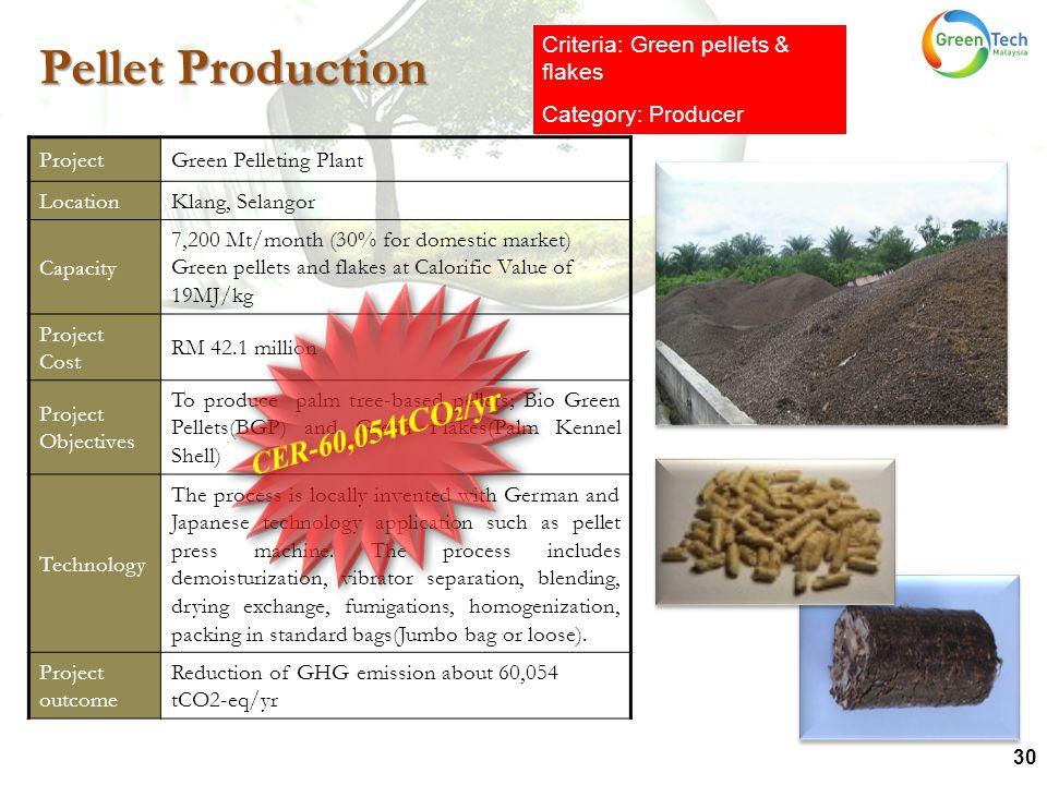 30 ProjectGreen Pelleting Plant LocationKlang, Selangor Capacity 7,200 Mt/month (30% for domestic market) Green pellets and flakes at Calorific Value