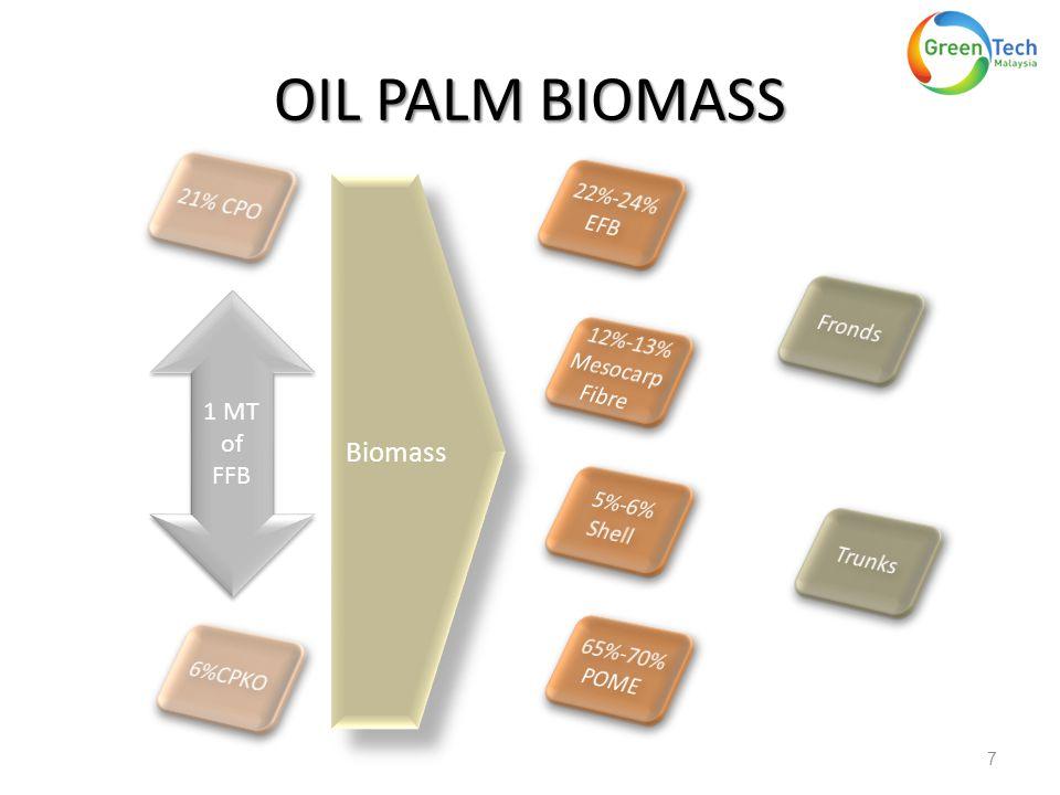 OIL PALM BIOMASS 7 1 MT of FFB Biomass