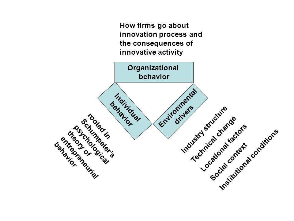 Individual behavior Organizational behavior Environmental drivers rooted in Schumpeters psychological theory of entrepreneurial behavior How firms go about innovation process and the consequences of innovative activity Industry structure Technical change Locational factors Social context Institutional conditions