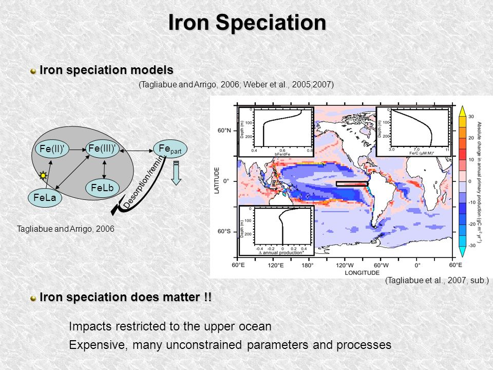 Iron Speciation Iron speciation models Iron speciation models Fe(III) Fe part FeLb Desorption/remin.