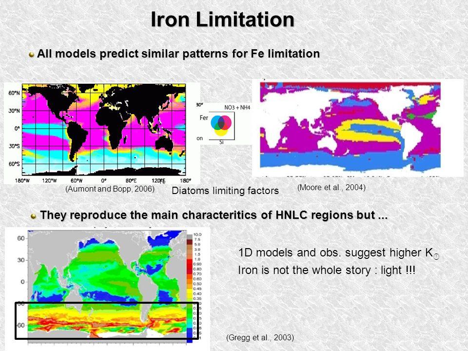 Iron Limitation All models predict similar patterns for Fe limitation All models predict similar patterns for Fe limitation (Aumont and Bopp, 2006) (Moore et al., 2004) Diatoms limiting factors They reproduce the main characteritics of HNLC regions but...