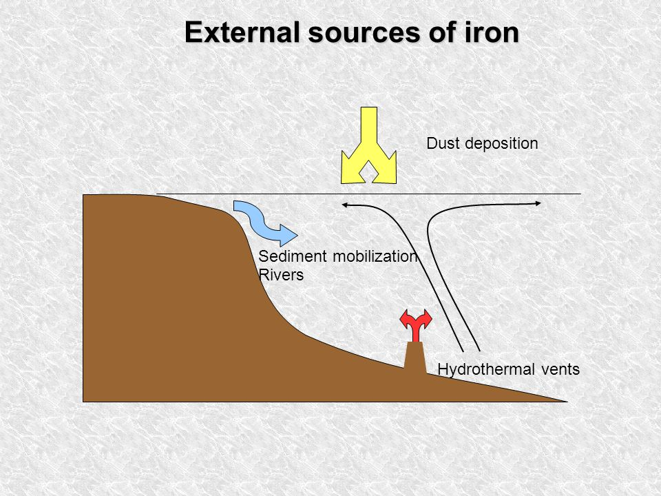 Sediment mobilization Rivers Dust deposition Hydrothermal vents External sources of iron