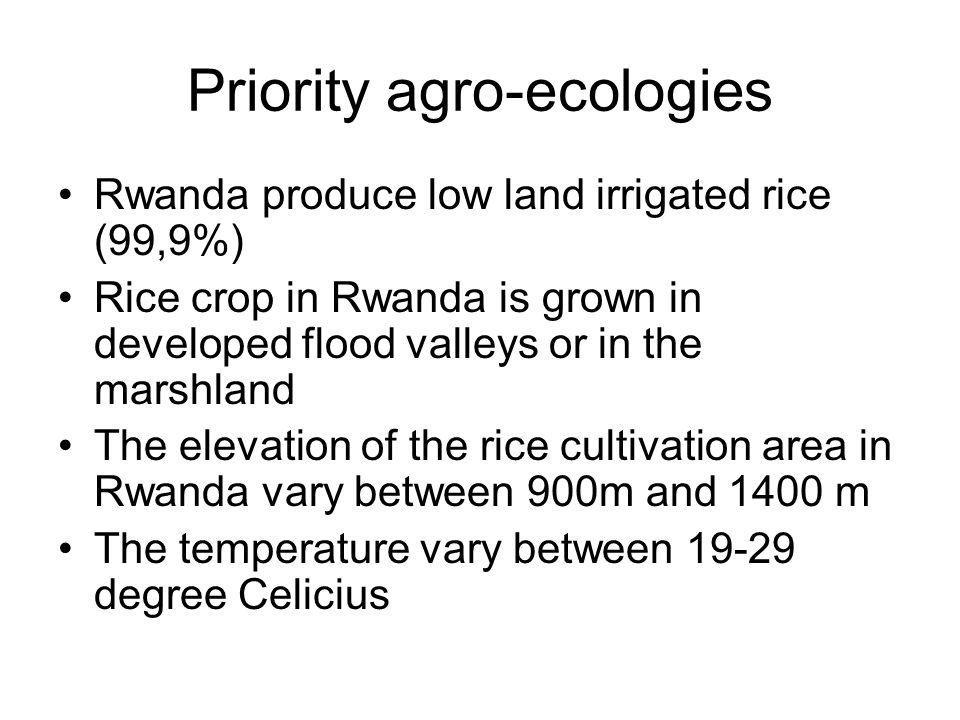 Priority agro-ecologies Rwanda produce low land irrigated rice (99,9%) Rice crop in Rwanda is grown in developed flood valleys or in the marshland The elevation of the rice cultivation area in Rwanda vary between 900m and 1400 m The temperature vary between 19-29 degree Celicius