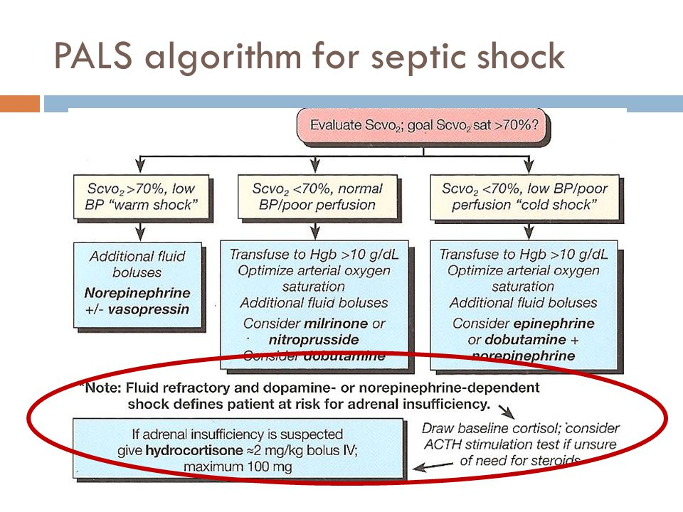 PALS algorithm for septic shock