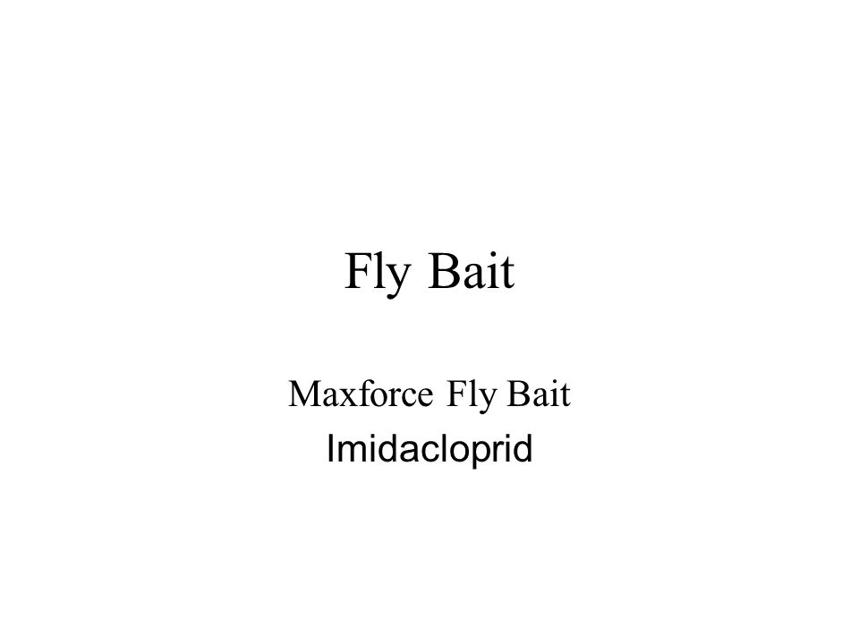 Fly Bait Maxforce Fly Bait Imidacloprid