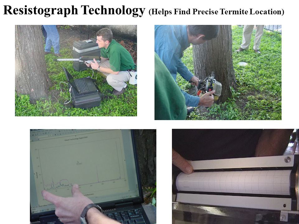 Resistograph Technology (Helps Find Precise Termite Location)