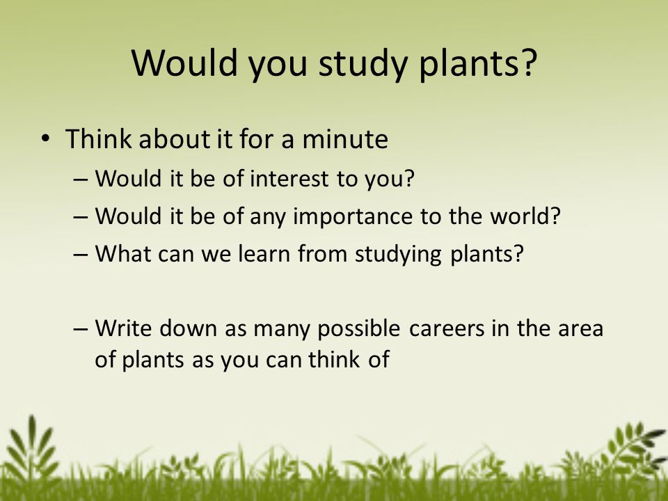 Would you study plants. Think about it for a minute – Would it be of interest to you.