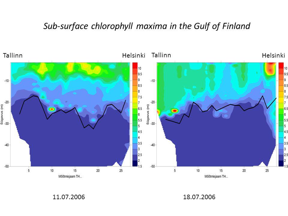 Sub-surface chlorophyll maxima in the Gulf of Finland Tallinn Helsinki 11.07.200618.07.2006