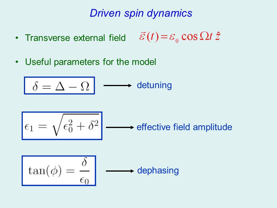 Driven spin dynamics Transverse external field Useful parameters for the model detuning effective field amplitude dephasing