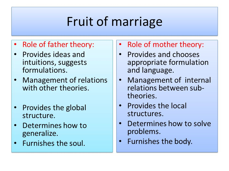 Fruit of marriage Role of father theory: Provides ideas and intuitions, suggests formulations. Management of relations with other theories. Provides t