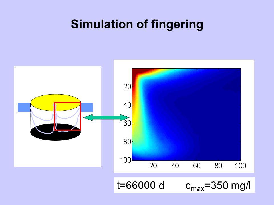 Simulation of fingering t=900 d c max =11 mg/lt=2900 d c max =30 mg/lt=6000 d c max =54 mg/lt=8500 d c max =75 mg/l t=12400 d c max =110 mg/l t=16800 d c max =235 mg/l t=25000 d c max =350 mg/l t=32500 d c max =350 mg/l t=46500 d c max =350 mg/l t=66000 d c max =350 mg/l