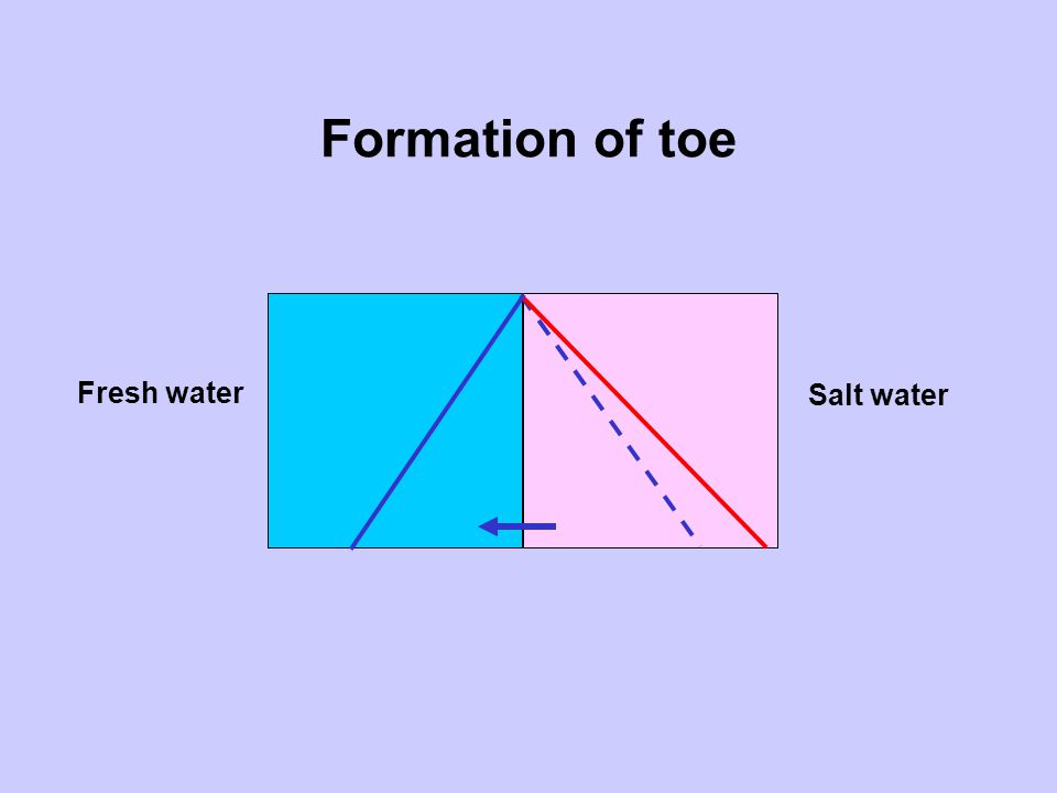 Formation of toe Fresh water Salt water