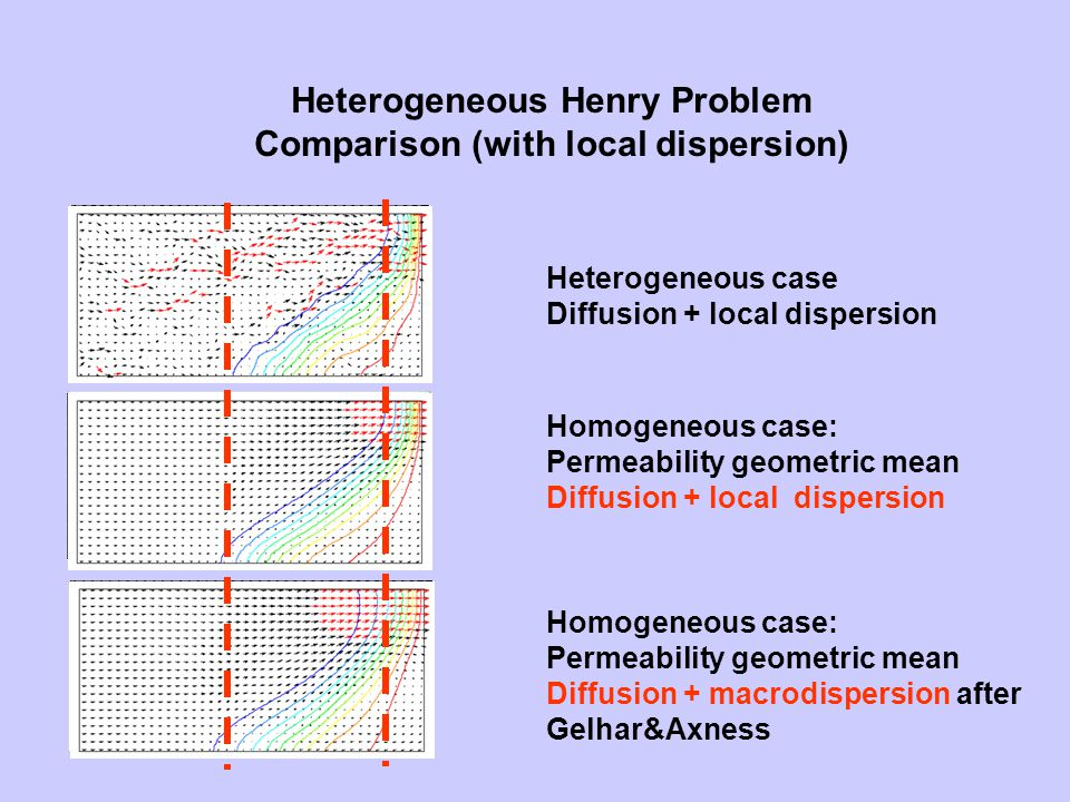Heterogeneous Henry Problem Comparison (with local dispersion) Heterogeneous case Diffusion + local dispersion Homogeneous case: Permeability geometric mean Diffusion + local dispersion Homogeneous case: Permeability geometric mean Diffusion + macrodispersion after Gelhar&Axness
