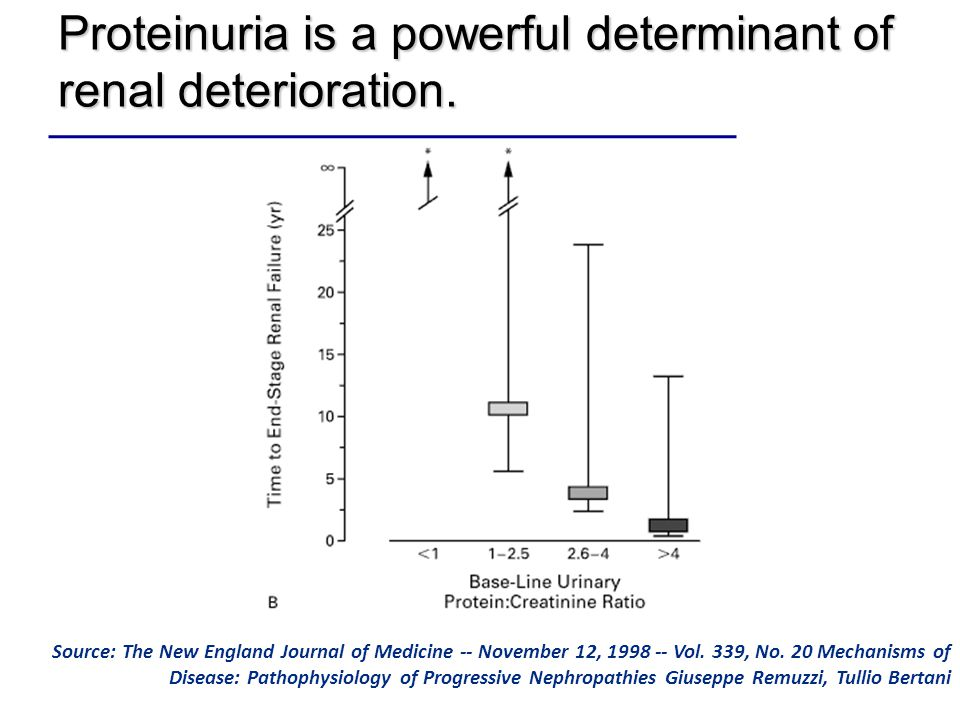 Proteinuria is a powerful determinant of renal deterioration. Source: The New England Journal of Medicine -- November 12, 1998 -- Vol. 339, No. 20 Mec