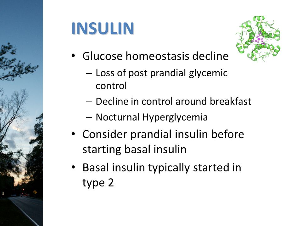 INSULIN Glucose homeostasis declines – – Loss of post prandial glycemic control – Decline in control around breakfast – Nocturnal Hyperglycemia Consid