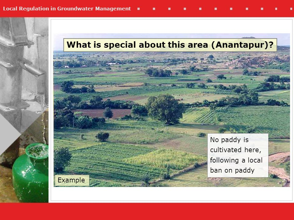 Local Regulation in Groundwater Management What is special about this area (Anantapur)? No paddy is cultivated here, following a local ban on paddy Ex