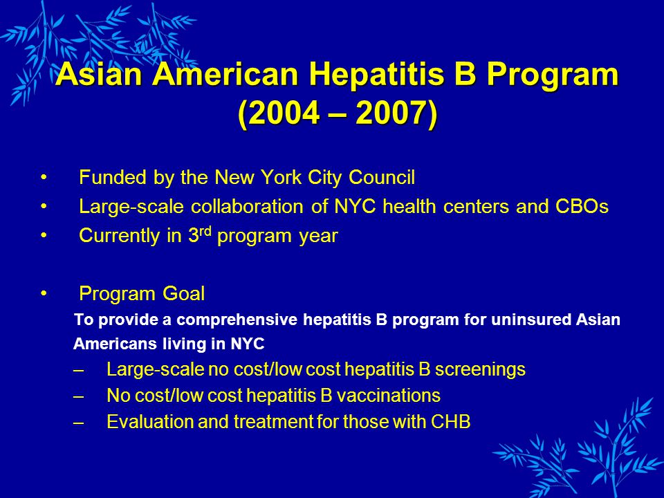 Funded by the New York City Council Large-scale collaboration of NYC health centers and CBOs Currently in 3 rd program year Program Goal To provide a comprehensive hepatitis B program for uninsured Asian Americans living in NYC –Large-scale no cost/low cost hepatitis B screenings –No cost/low cost hepatitis B vaccinations –Evaluation and treatment for those with CHB Asian American Hepatitis B Program (2004 – 2007)