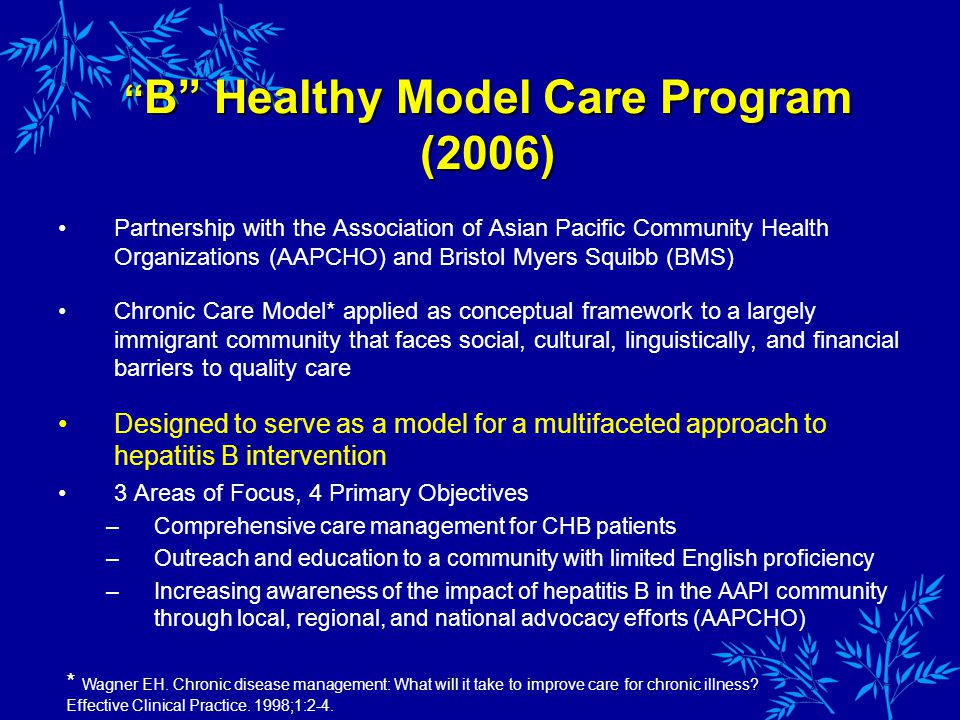 Partnership with the Association of Asian Pacific Community Health Organizations (AAPCHO) and Bristol Myers Squibb (BMS) Chronic Care Model* applied as conceptual framework to a largely immigrant community that faces social, cultural, linguistically, and financial barriers to quality care Designed to serve as a model for a multifaceted approach to hepatitis B intervention 3 Areas of Focus, 4 Primary Objectives –Comprehensive care management for CHB patients –Outreach and education to a community with limited English proficiency –Increasing awareness of the impact of hepatitis B in the AAPI community through local, regional, and national advocacy efforts (AAPCHO) B Healthy Model Care Program (2006) B Healthy Model Care Program (2006) * Wagner EH.