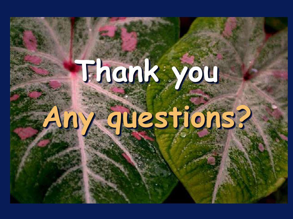 Thank you Any questions? Thank you Any questions?