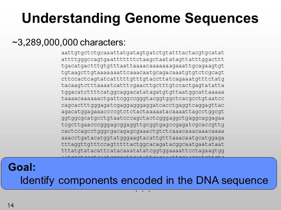 14 Understanding Genome Sequences ~3,289,000,000 characters: aattgtgctctgcaaattatgatagtgatctgtatttactacgtgcatat attttgggccagtgaatttttttctaagctaatatagt
