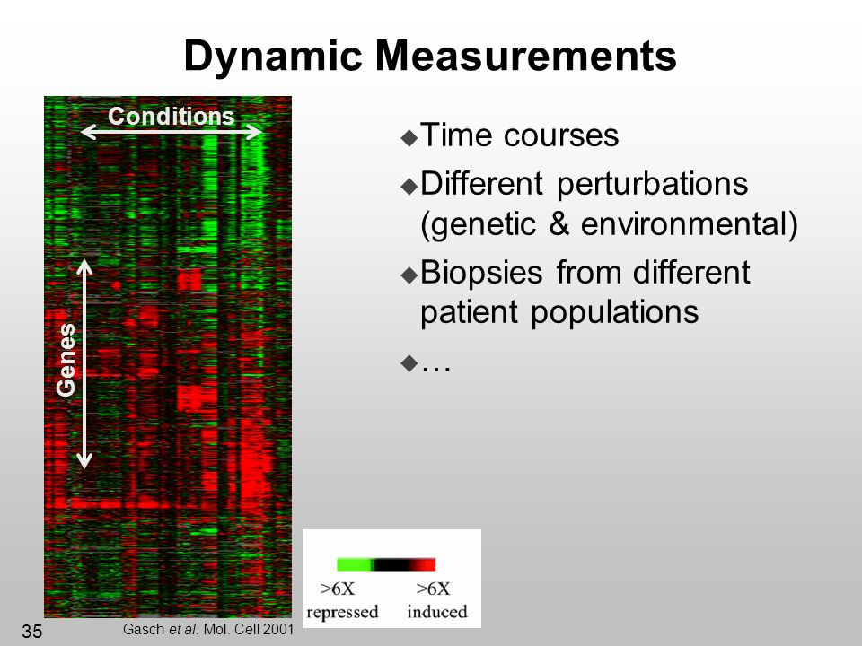 35 Dynamic Measurements Time courses Different perturbations (genetic & environmental) Biopsies from different patient populations … Conditions Genes
