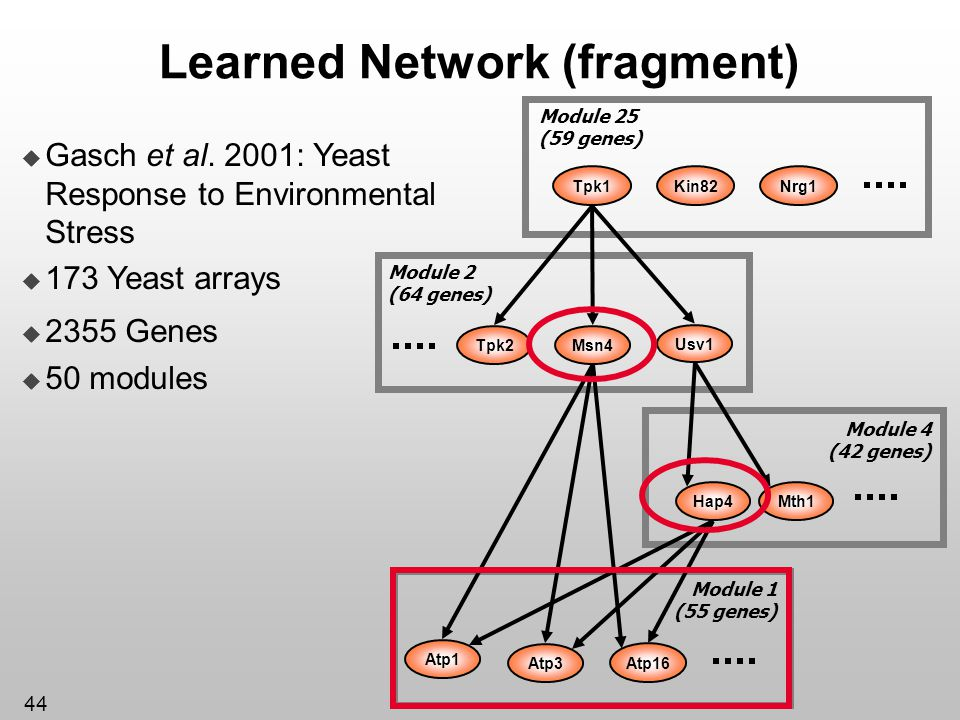 44 Learned Network (fragment) Atp1 Atp3 Module 1 (55 genes) Atp16 Hap4Mth1 Module 4 (42 genes) Kin82Tpk1 Module 25 (59 genes) Nrg1 Module 2 (64 genes)