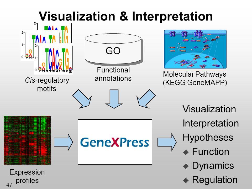47 Visualization & Interpretation Molecular Pathways (KEGG GeneMAPP) Functional annotations GO Expression profiles Cis-regulatory motifs Visualization
