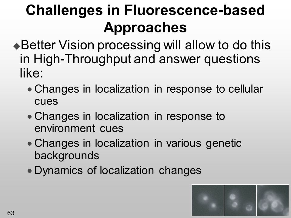 63 Challenges in Fluorescence-based Approaches Better Vision processing will allow to do this in High-Throughput and answer questions like: Changes in