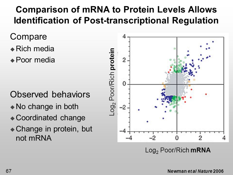 67 Comparison of mRNA to Protein Levels Allows Identification of Post-transcriptional Regulation Newman et al Nature 2006 Compare Rich media Poor medi
